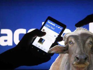 Notizie bufale su Facebook, ecco le mosse di Zuckerberg contro la disinformazione